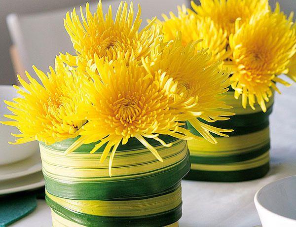 Crisantemos Amarillo En 2019 Plantas De Interior