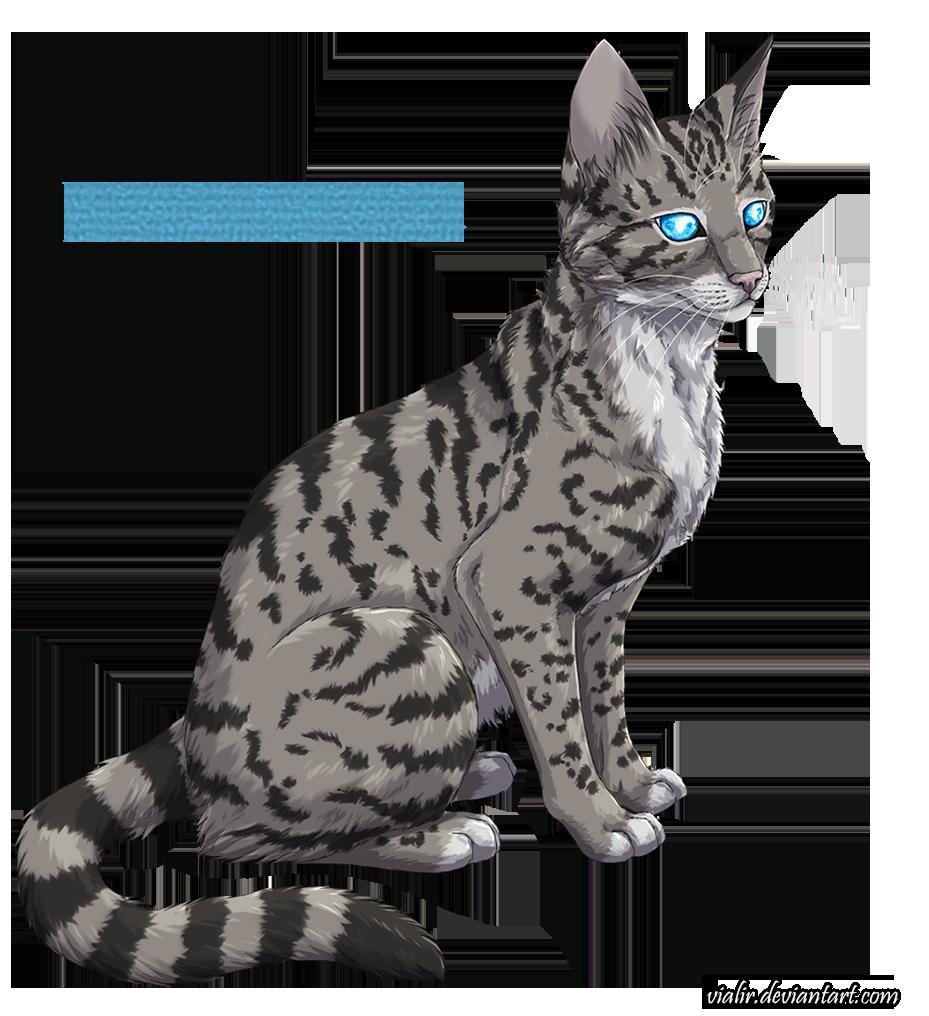 Jayfeather by on DeviantArt