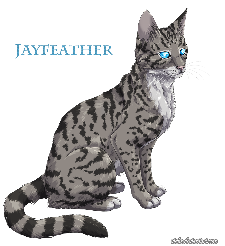 Warriors The Prophecies Begin Book 3: Jayfeather By Vialir.deviantart.com On @DeviantArt