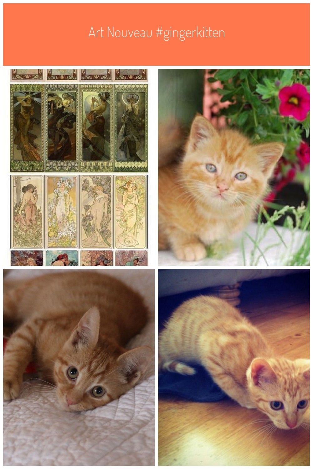 Art Nouveau #gingerkitten Art nouveau Kittens ginger kitten #ginger #Kittens #gingerkitten Art Nouveau #gingerkitten Art nouveau Kittens ginger kitten #ginger #Kittens #gingerkitten Art Nouveau #gingerkitten Art nouveau Kittens ginger kitten #ginger #Kittens #gingerkitten Art Nouveau #gingerkitten Art nouveau Kittens ginger kitten #ginger #Kittens #ginger kittens #gingerkitten