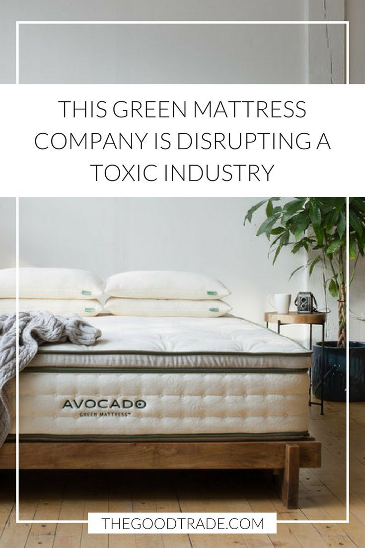 The Mattress Company Avocado Mattress Is The New Green Mattress Company Disrupting A