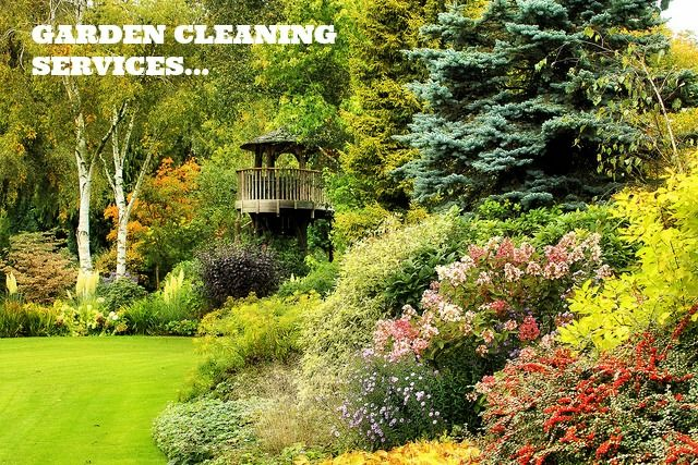 On this Christmas season hire our professional cleaners to take care of your Garden at very affordable price. Book today at: 1800 477 000 & (03) 95 477 477