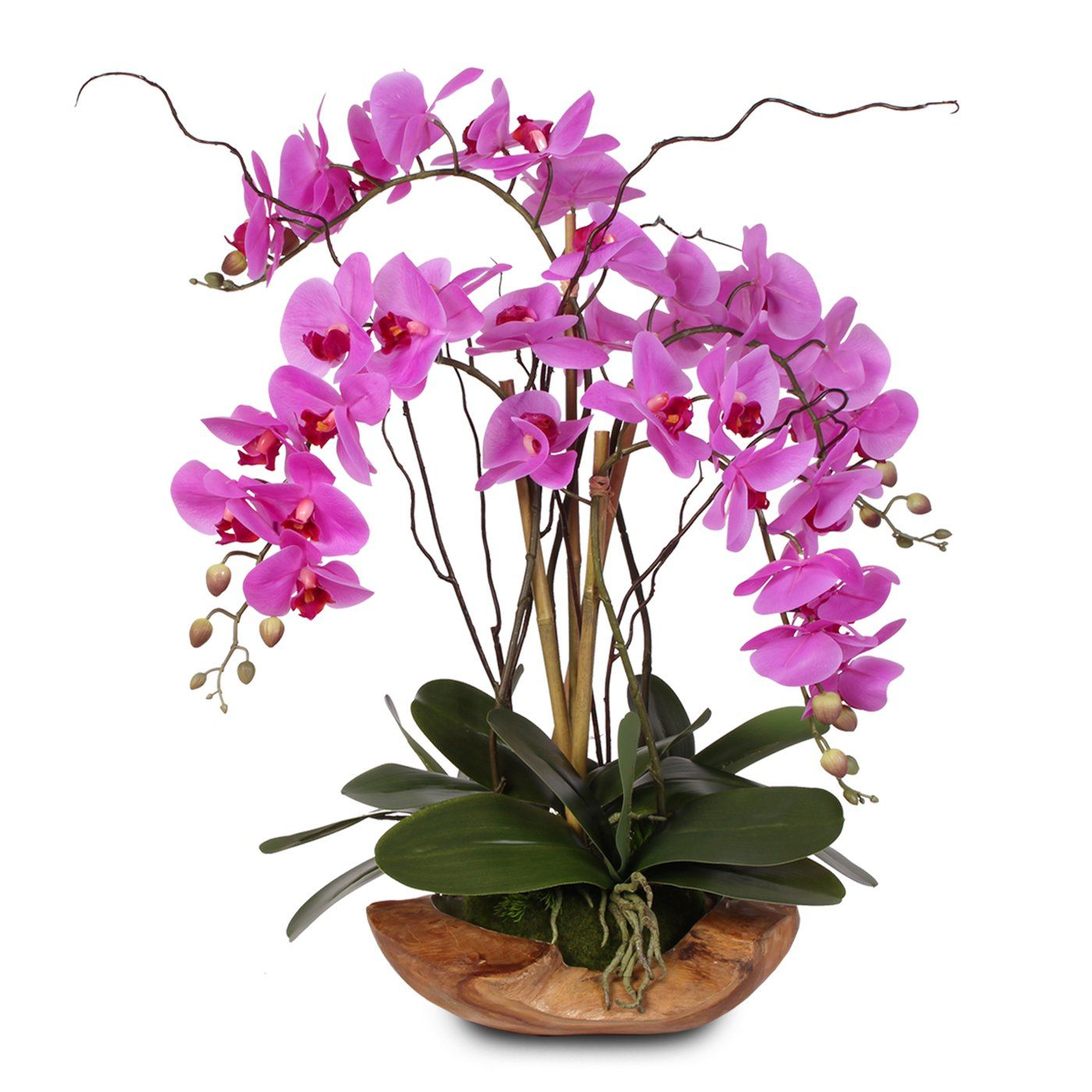 Real Touch 5 Stem Phalaenopsis Silk Orchids In A Natural Teakwood Bowl 59a In 2020 Orchid Arrangements Orchid Flower Arrangements Silk Orchids Arrangements