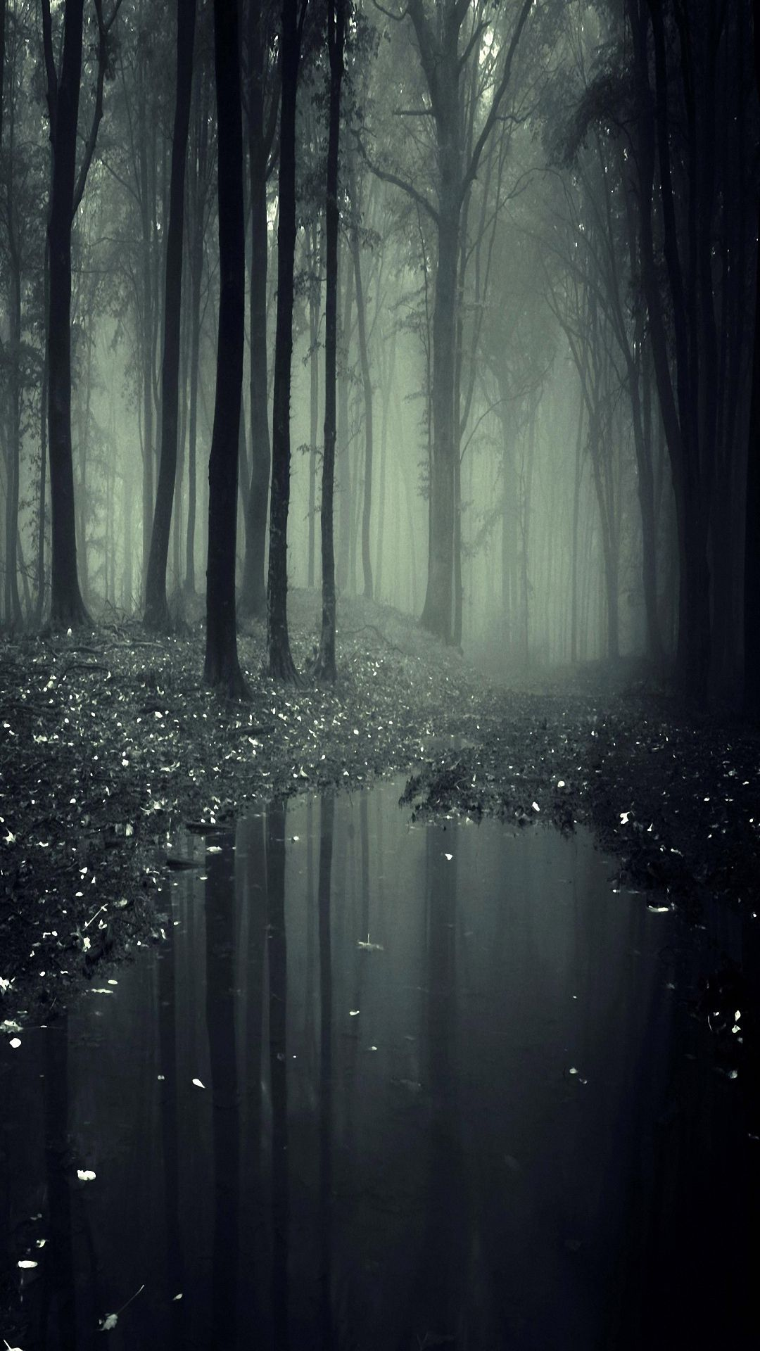 Hd 1080x1920 Jungle Galaxy S4 S5 Wallpapers 1080x1920 Forest Wallpaper Landscape Wallpaper Dark Wallpaper
