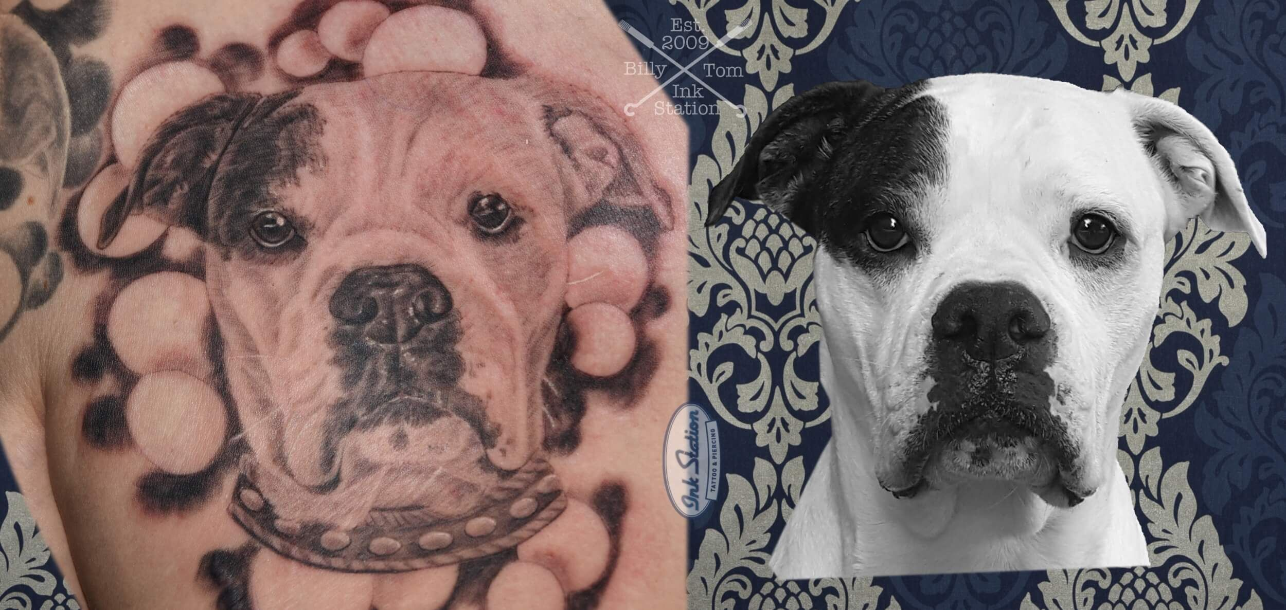 American Bulldog Portrait Tattoo From Billy From The Ink Station Www Ink Station Net Www Tattooentfernung Stuttga Tiertattoos Tattoo Stuttgart Tattoo Magazin