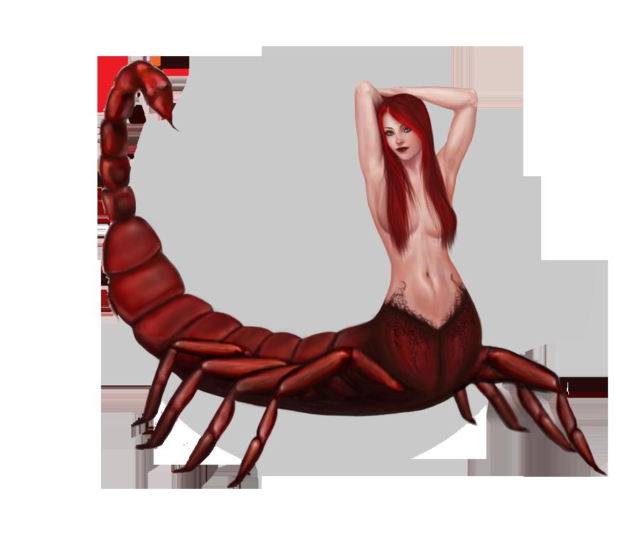 отличие скорпион красивые девиант арт картинки нее также