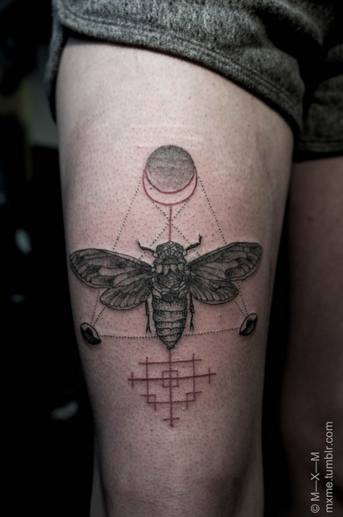Wear Your Ink39 Entomology Style Moth Tattoo Symbolism Moth For