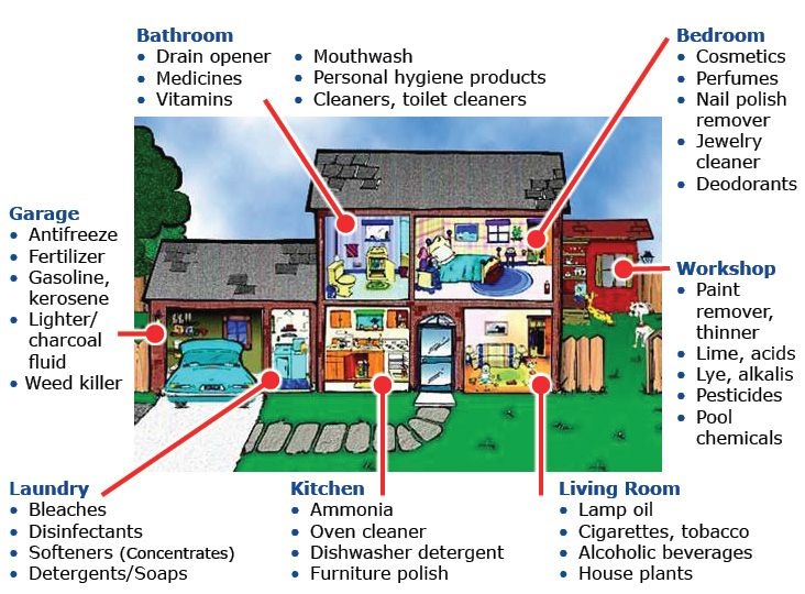 Potential household poisons by room graphic http www for Safety around the house
