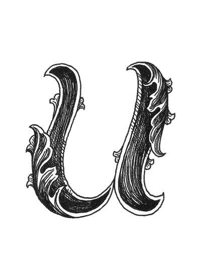 Leaf Script U Art Print Alphabet Art Print Lettering Alphabet