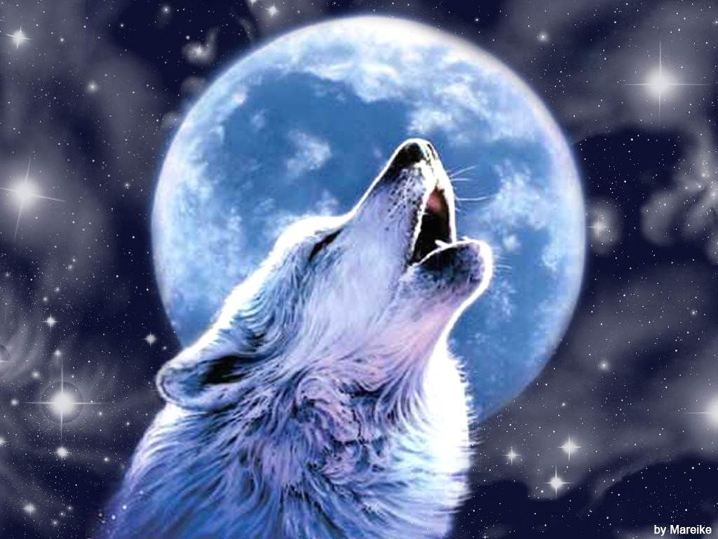 Wallpaper Of Wolf 1024 768 Cool Wolf Backgrounds Adorable Wallpapers Wolf Howling At Moon Wolf Background Wolf Painting