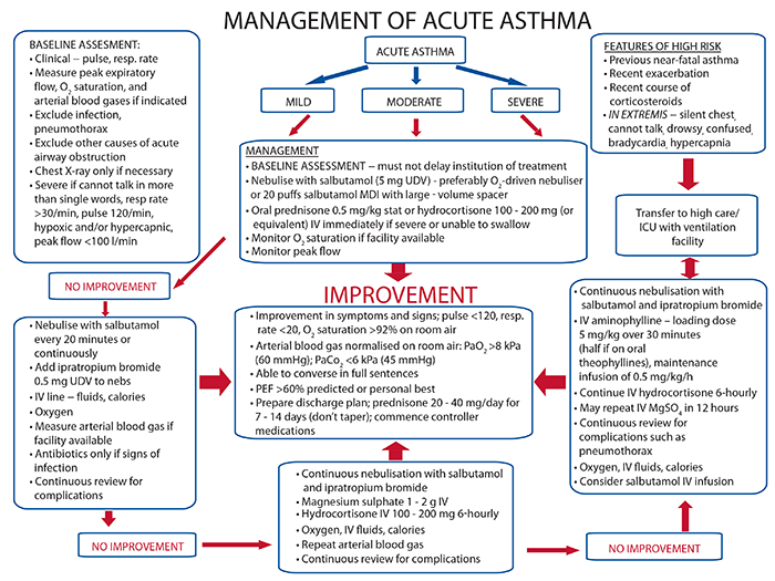 Pediatric Asthma Medications  You Can Find More Details By