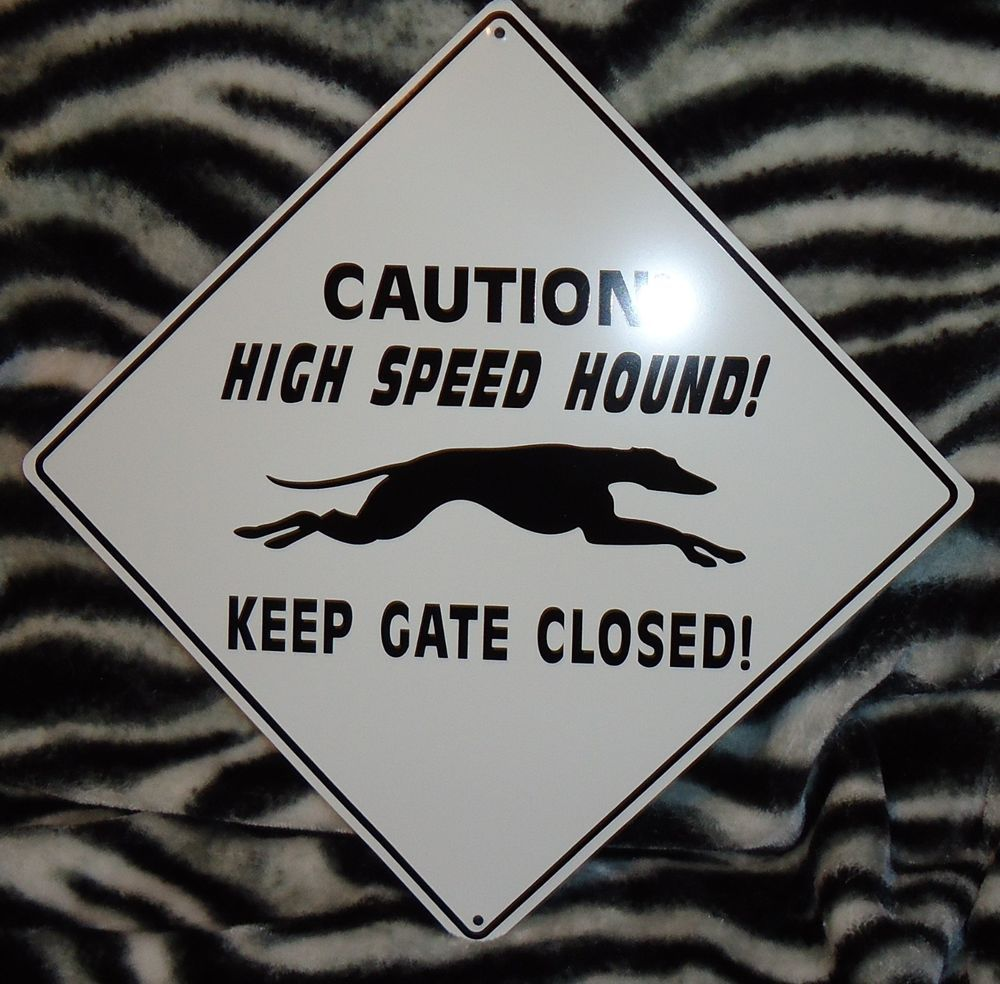 For the fence we need to put up. Proceeds go to GPA of Orlando. Greyhound gate sign (Greyhound Adoption)
