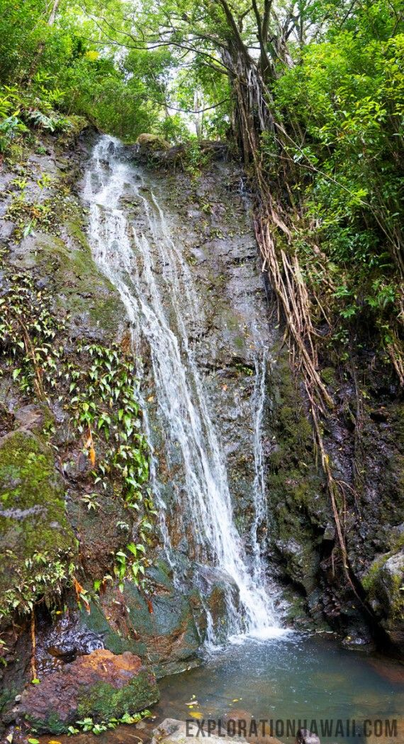 A full length view of Aihulama Falls. Photo by Coty Gonzales.