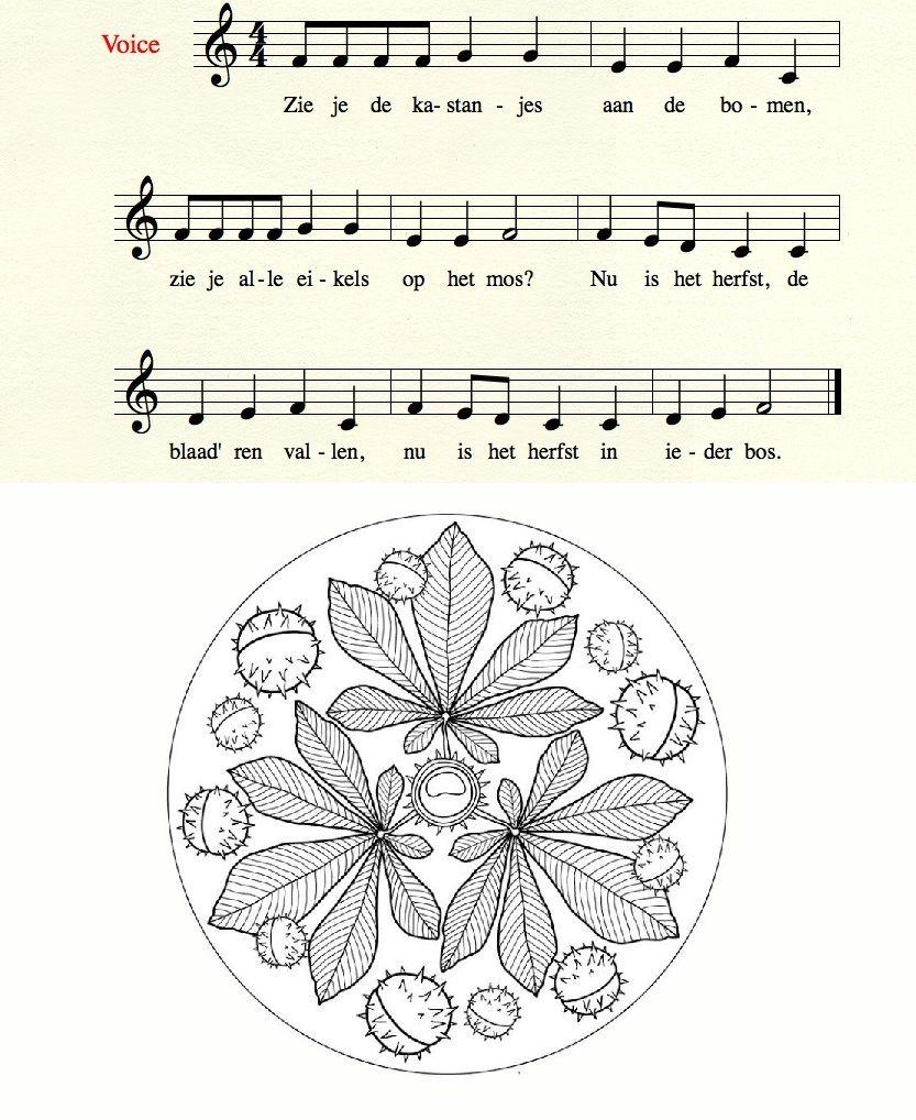 Liedje Zie Je De Kastanjes Kinderliedjes Liedjes Muzieknoten