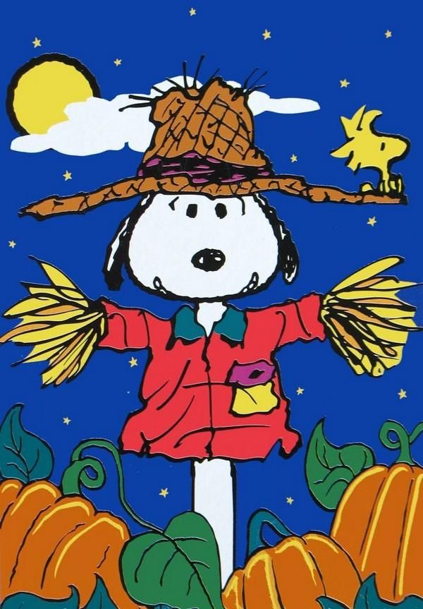 NON-VINTAGE FLAG - SCARECROW SNOOPY (New But Near Mint)