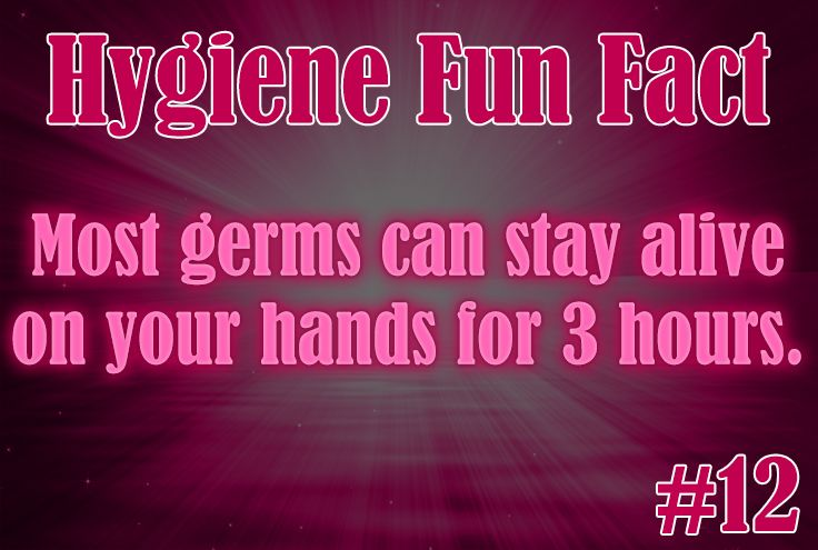 Hygiene Fun Fact 12 Most Germs Can Stay Alive On Your Hands For