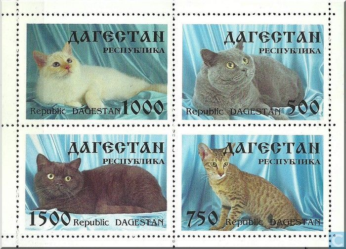 Postage Stamps - Fantasy country - Dagestan, Republic. Cats