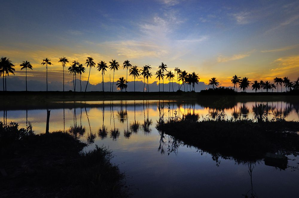 如何办理马来西亚护照 快速护照项目办理 奈思移民in 2020 Celestial Outdoor Sunset