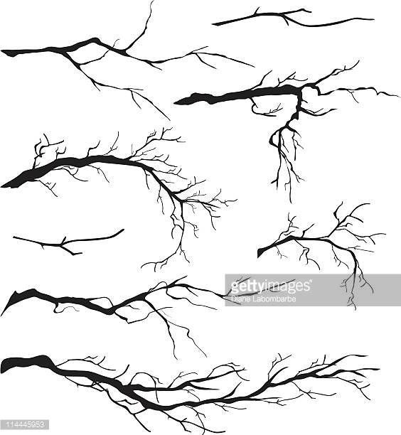 Image result for branch vector