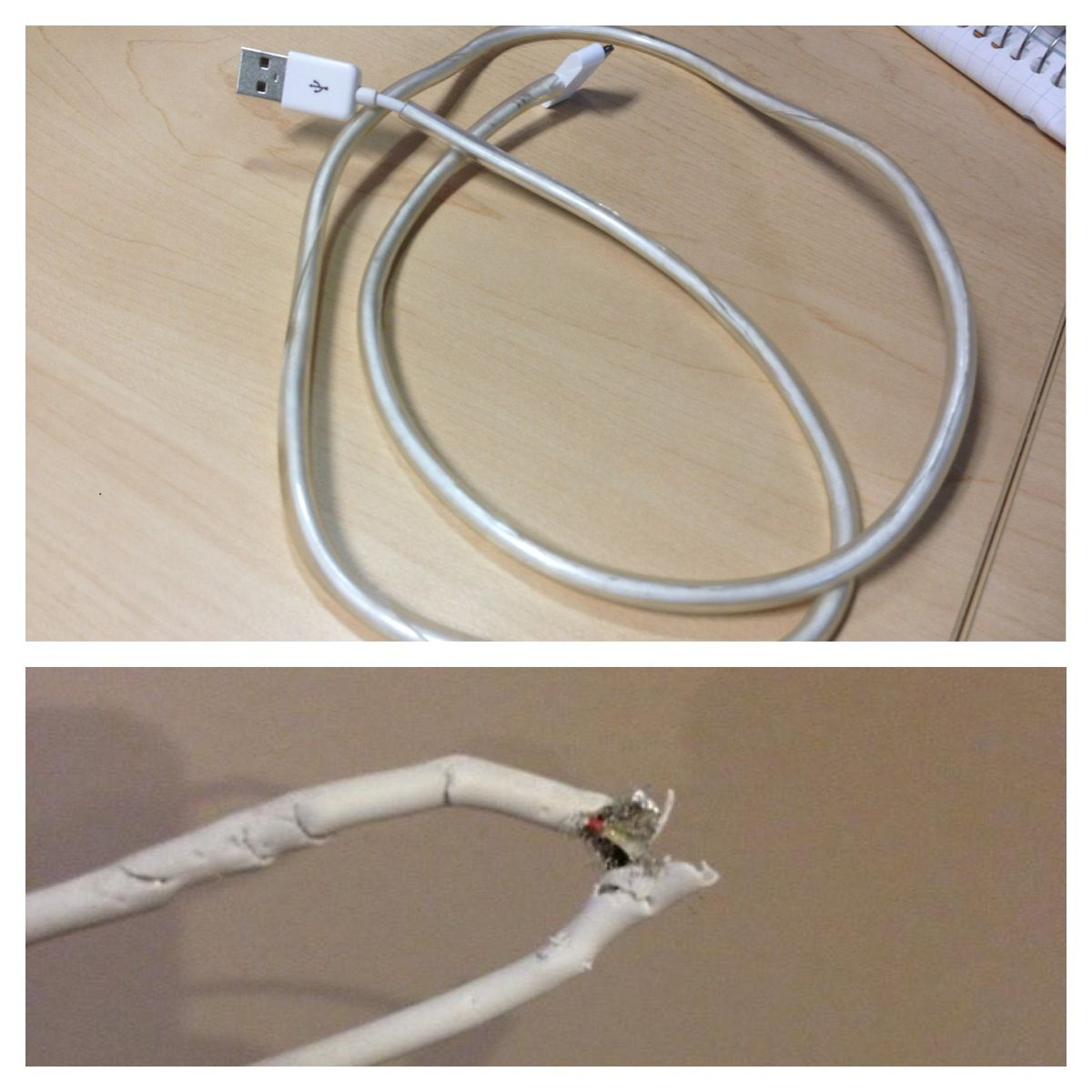 iPhone charger cord... Bottom pic. - 3rd cord that the cat chewed ...