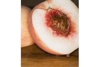How to Prepare Peach Seeds for Planting (7 Steps)   eHow # ...