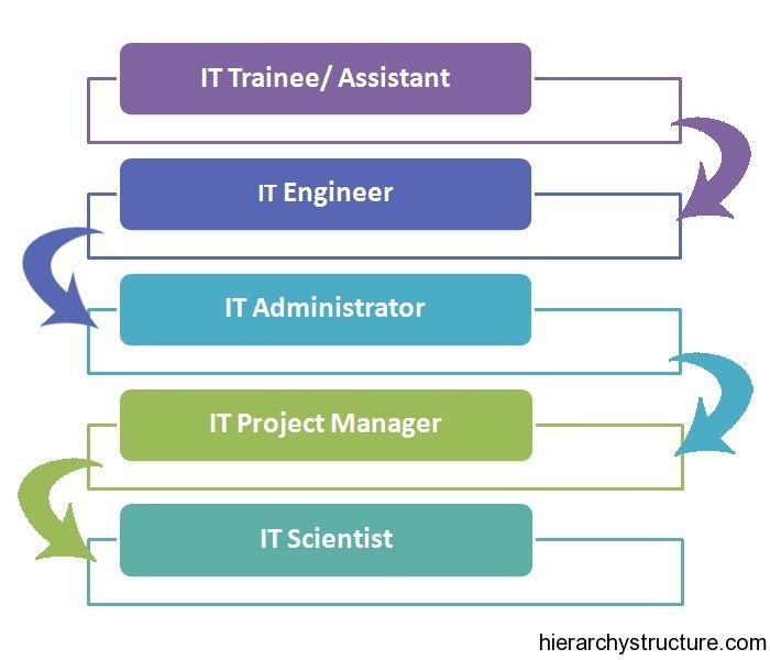 It Career Hierarchy Hierarchy Career Job