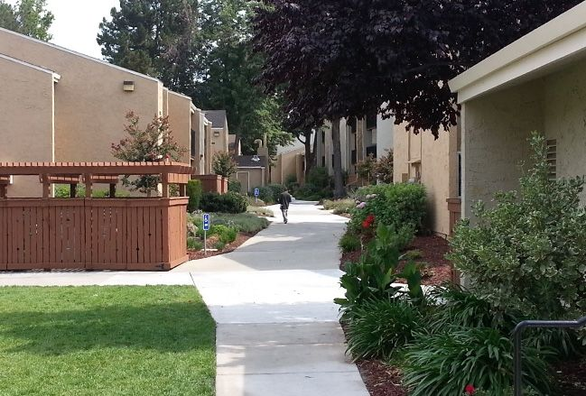 Elena Gardens San Jose California Mary Murtagh President And Ceo Real Estate Professionals Affordable Housing Real Estate