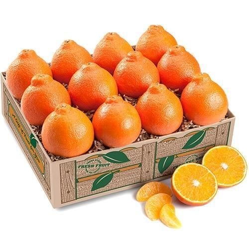 PRE-ORDER NOW FOR JANUARY ARRIVAL ***ESTIMATED DELIVERY IS 2 WEEKS AFTER ORDER DATE**** Florida's premier citrus fruit. Honeybells are available for a short time, early in February, they have fantastic appearance, a unique taste, and are bursting with juice! ORDER EARLY ON THESE! You may mix with Red Grapefruit. CALL FOR PRICING! UNCONDITIONAL GUARANTEE Every package in carefully packed with Florida's Finest. Our business reputation depends on SERVICE and QUALITY. Delivery is guaranteed on all s