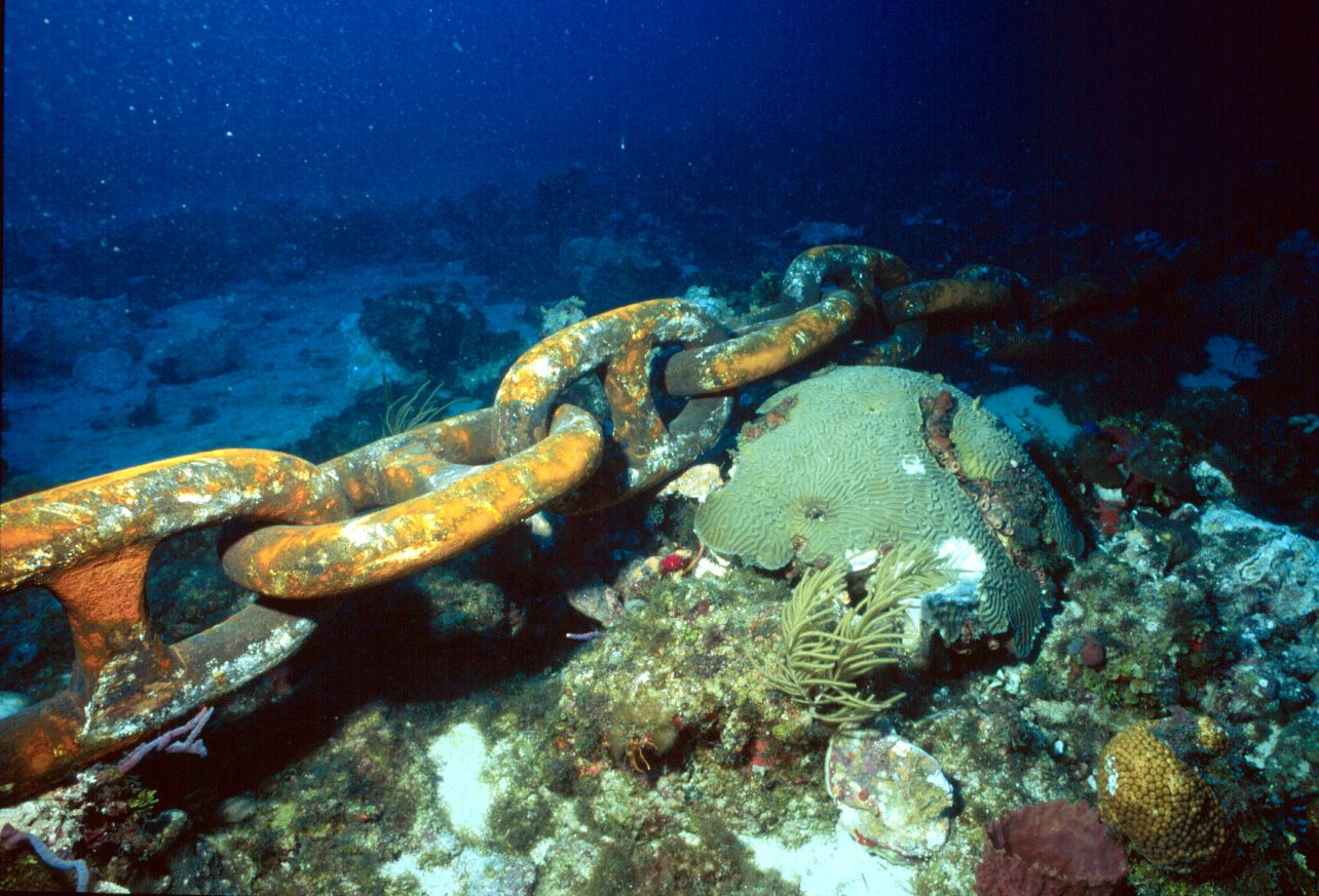 Heavy anchors can smash even the most sturdy corals, while the anchor chains and line can scrape coral, removing living tissue, and can wrap around corals and break off pieces of coral colonies - or even entire colonies - as the boats sway back and forth and pull on the line.  So anchor in the sand or mud, NOT in the coral.