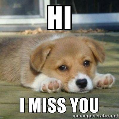 Cute I Miss You Meme