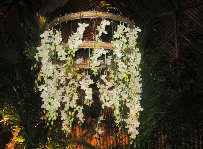 Hanging wreath #wreath #flowers #white
