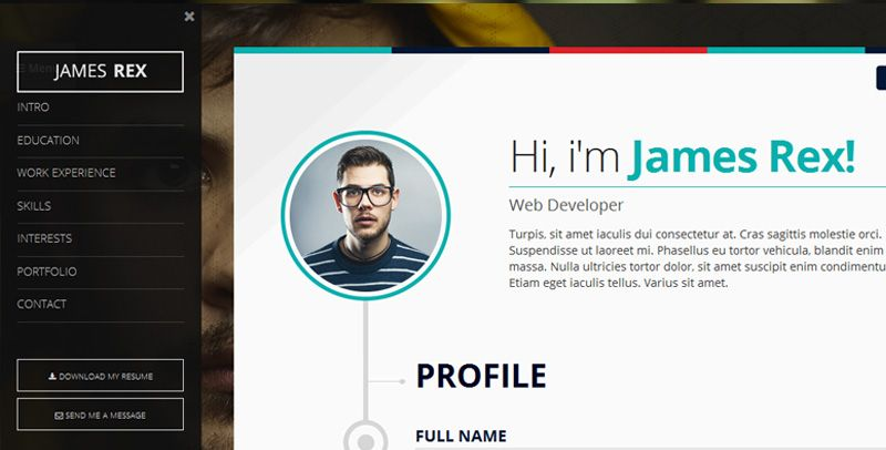 wordpress resume cv template nt profile premium cv resume - Wordpress Resume Template
