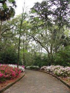 215112966c28edacc4e9e10f93a44b87 - Maclay Gardens State Park Tallahassee Florida
