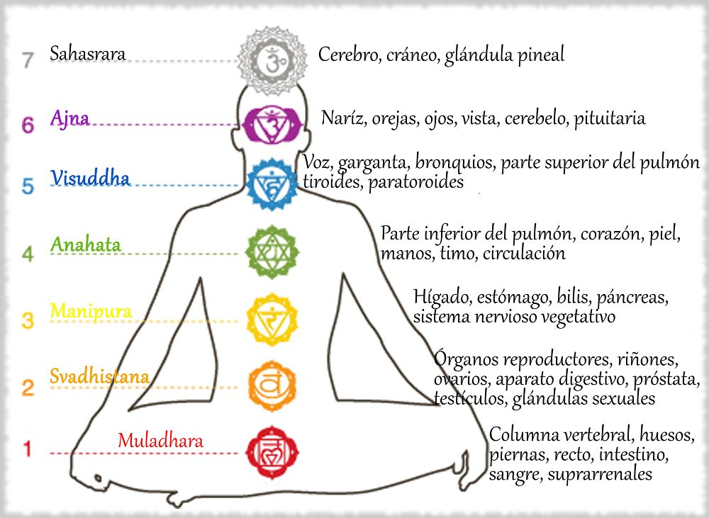 Cómo abrir chacras (chakras) | Chakra de la garganta, Como abrir ...