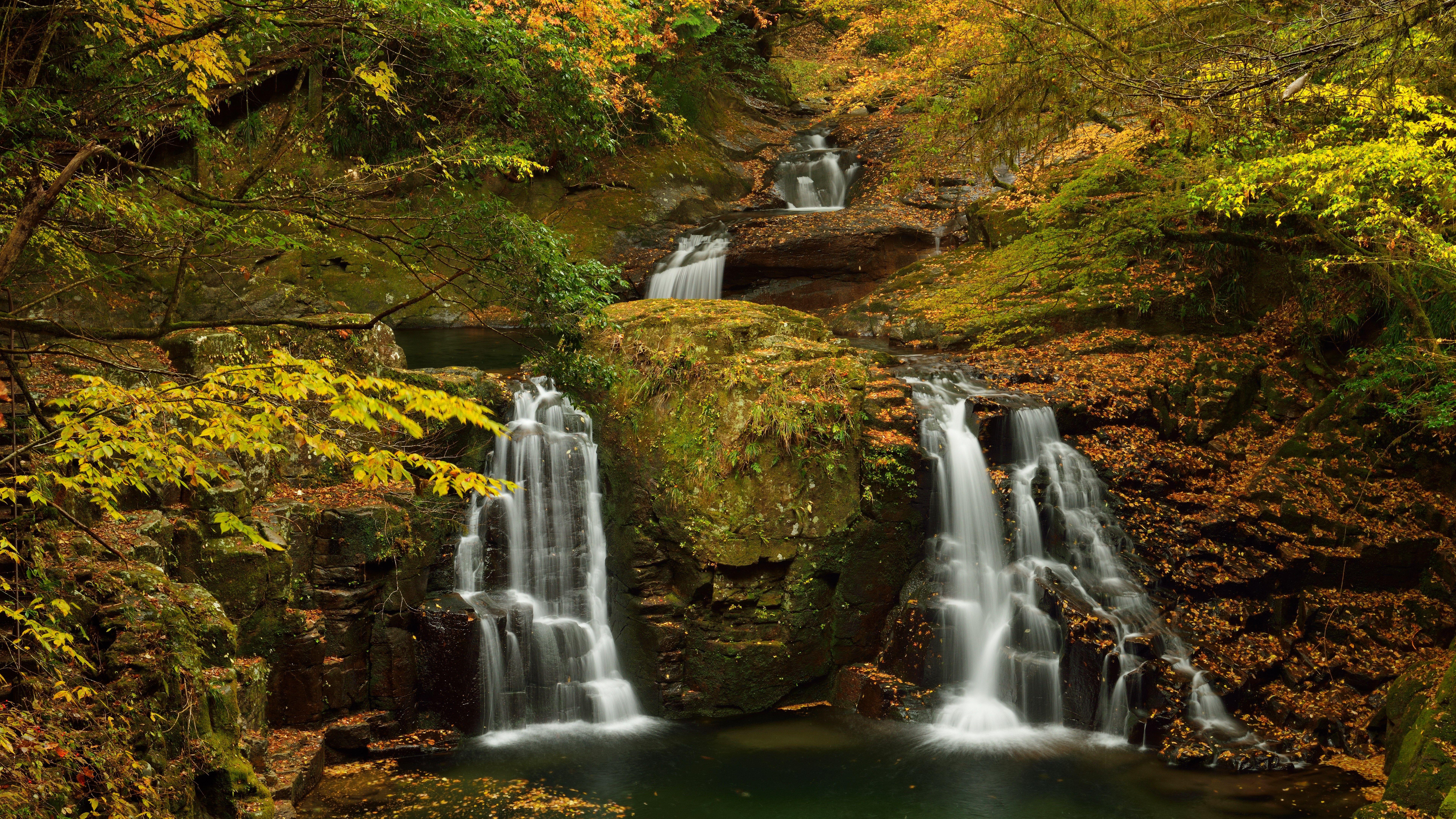 Full Hd 8k Wallpaper Waterfall Forest Waterfall Wallpaper