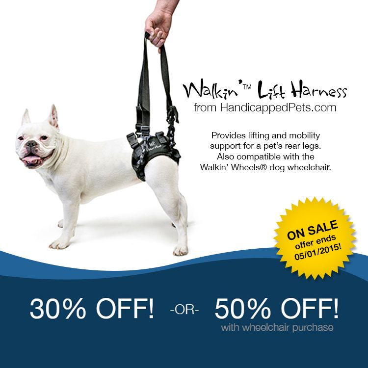 Walkin Lift Rear Harness For Dogs From Handicappedpets Com Dog Wheelchair Pets Pet Gear