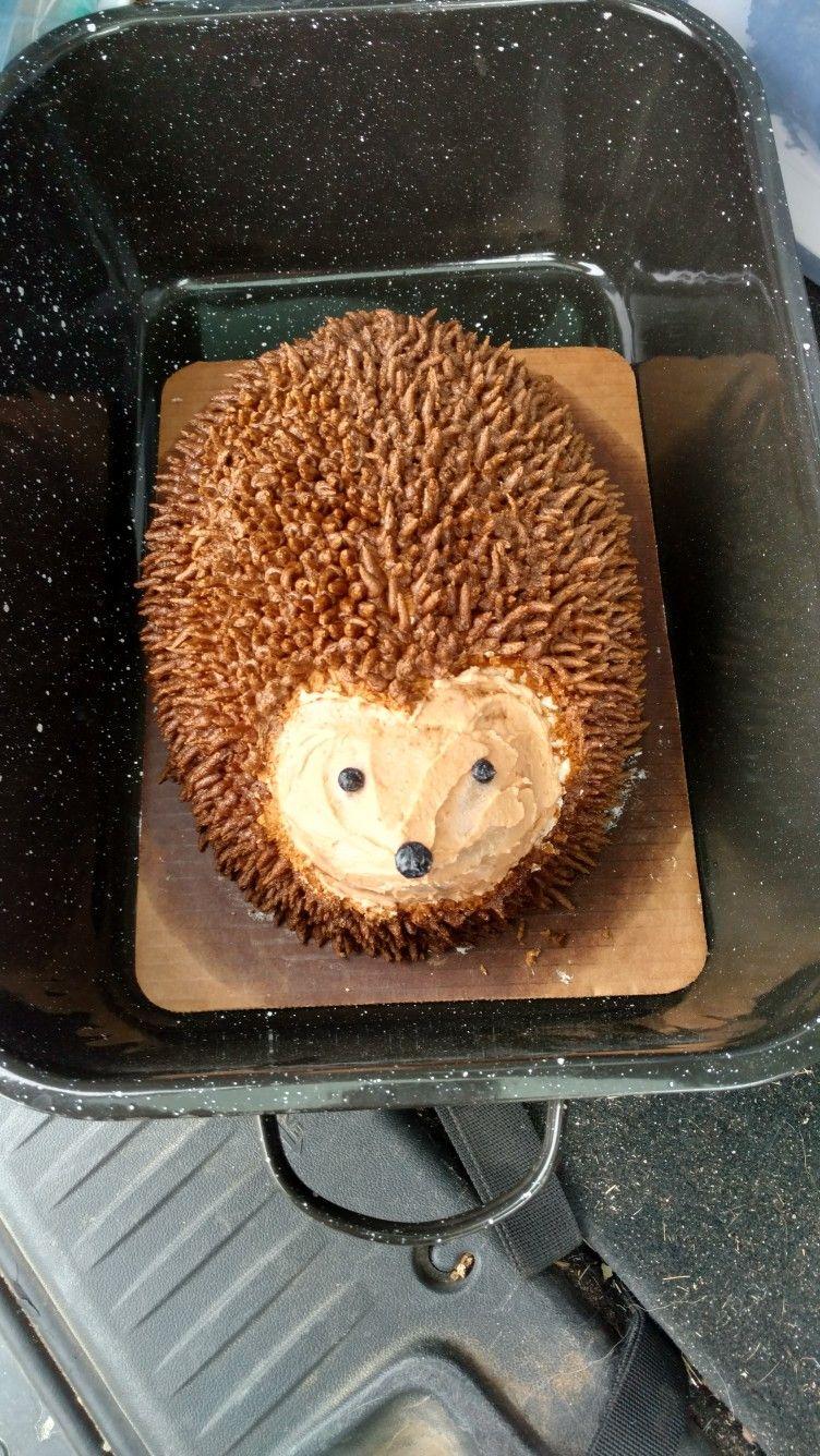 Hedgehog cake hedgehog cake cakes for boys 1st boy