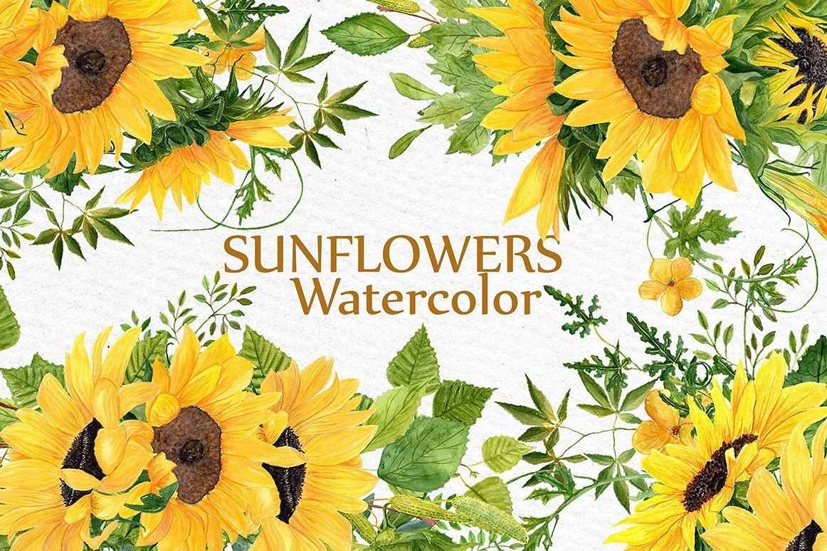 Sunflower Clipart Watercolor Wreath Sunflower Clipart