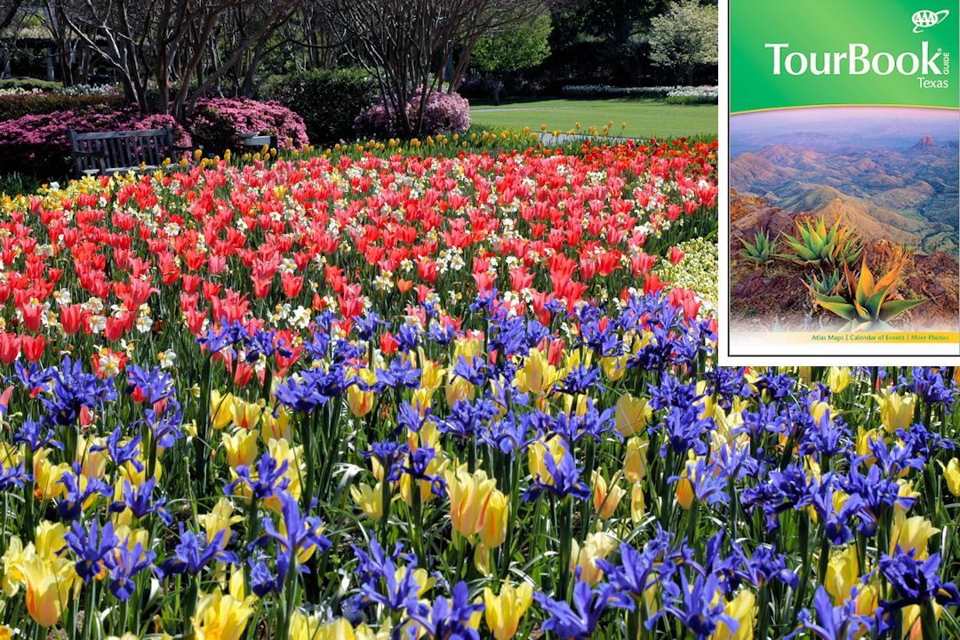 The Dallas Arboretum and Botanical Gardens in Dallas, Texas. This attraction & more can be seen in the 2013 Texas AAA TourBook® guide! Pick up your copy today at your local AAA club location.