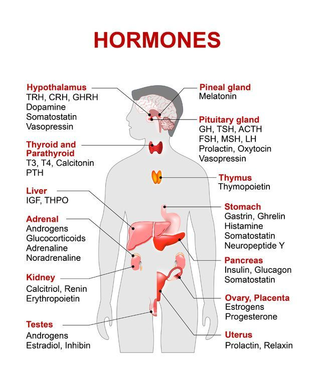 Examples of Hormones and the Location of Production ...