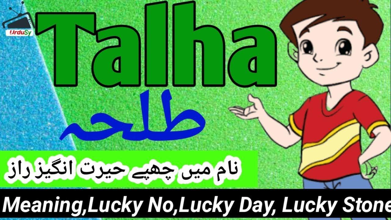 Talha طلحہ Name Meaning In Urdu Talha Naam Ka Matlab Kya Hai Islamic Muslim Boy Names Names With Meaning Baby Boy Names