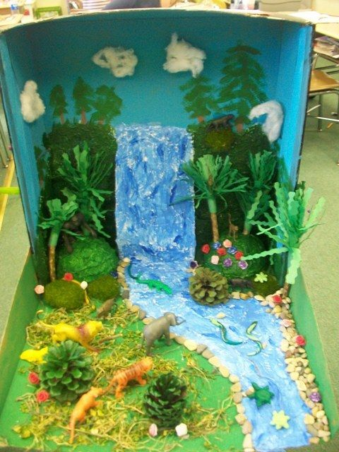 Woodland habitat diorama projects 2nd grade rocks for Habitat container