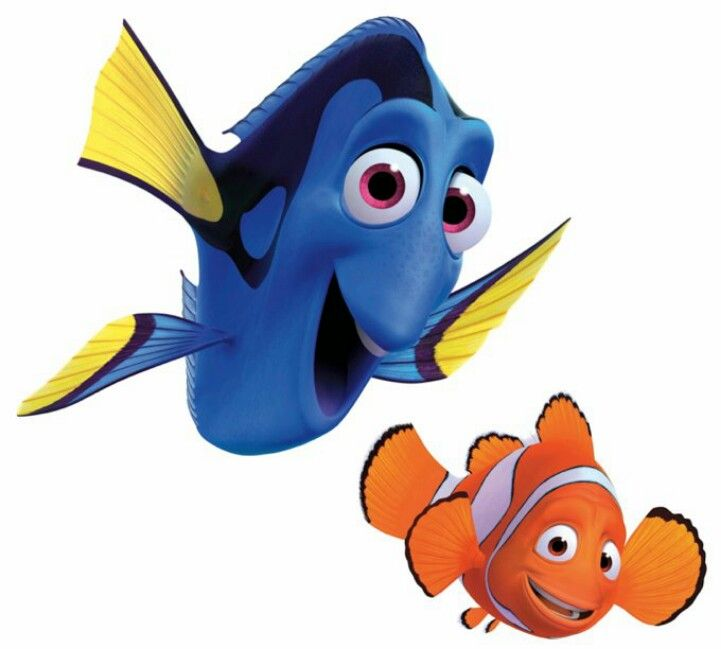Dory Marlin Finding Nemo Finding Nemo Characters Disney Finding Dory Nemo