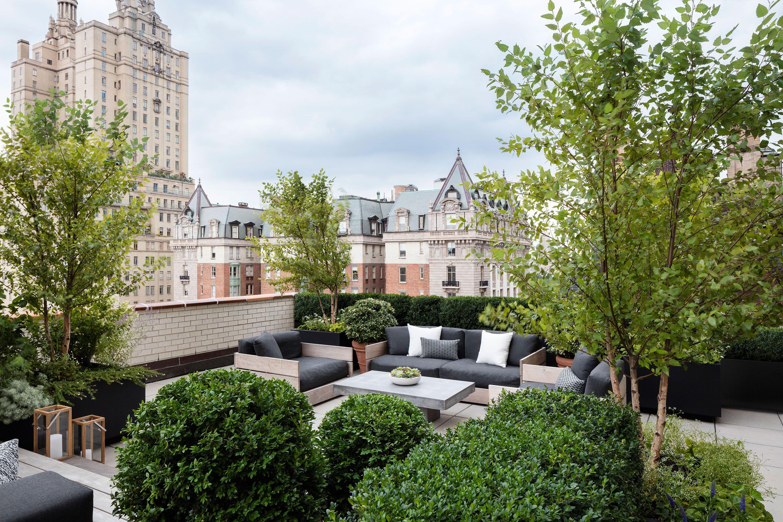 Creating A Leafy Green Oasis On A Manhattan Terrace Penthouse Garden Terrace Pergola Designs