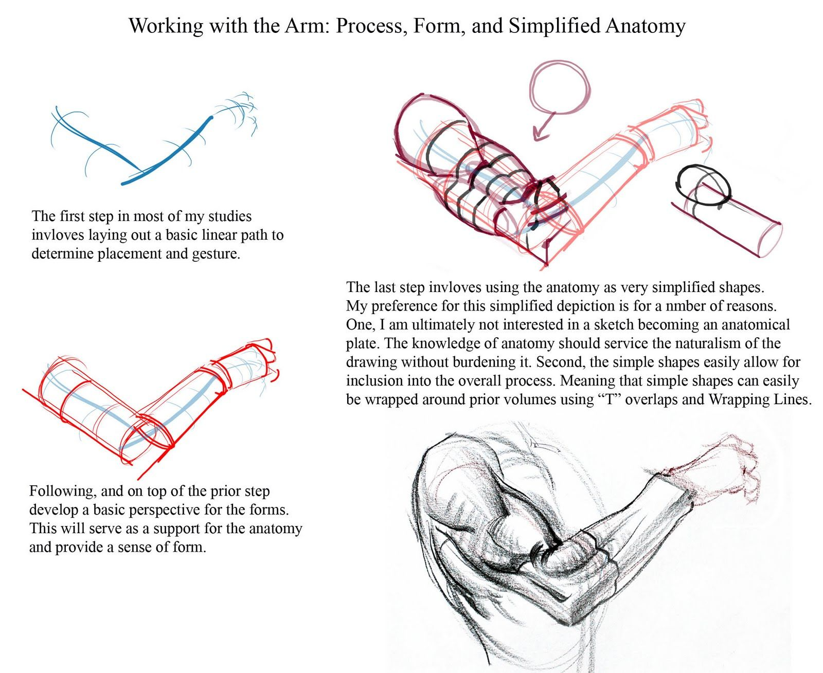 Working with the Arm: Process, Form, and Simplified Anatomy by ...