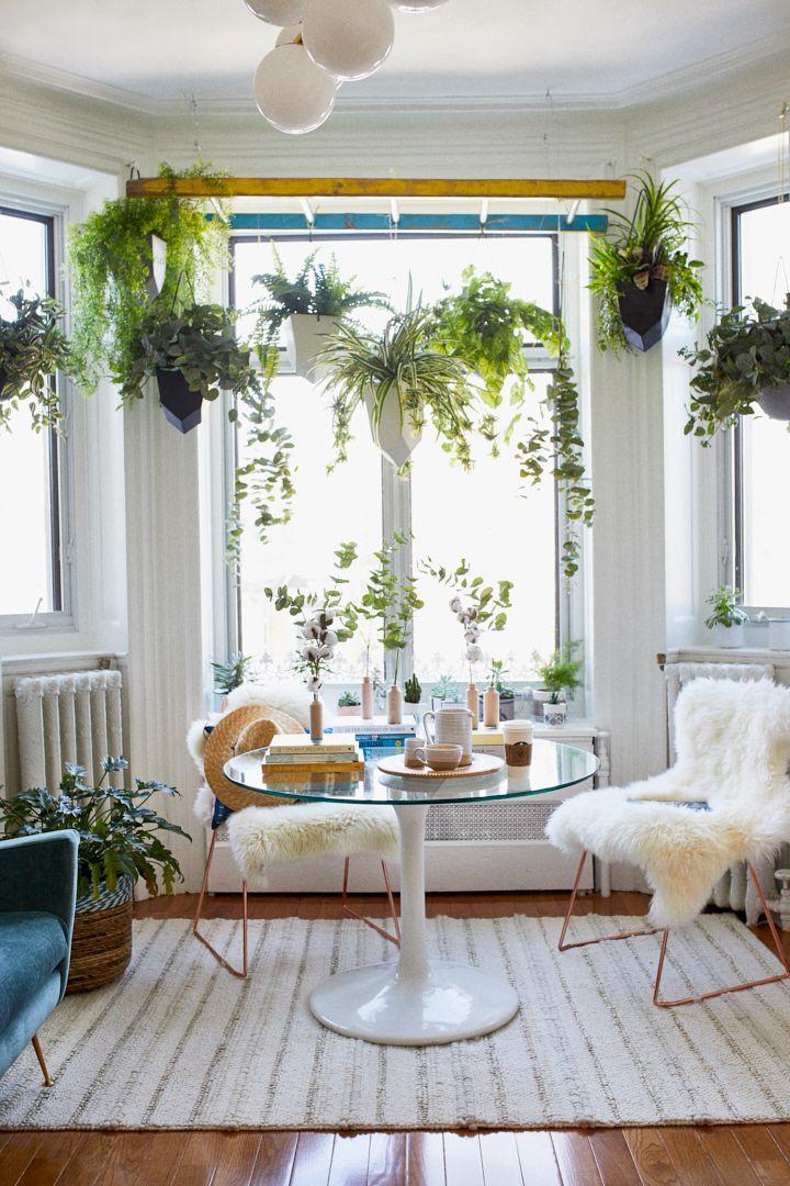 Un décor Hygge avec des plantes suspendues Plantas, Terrazas y - decoracion de interiores con plantas
