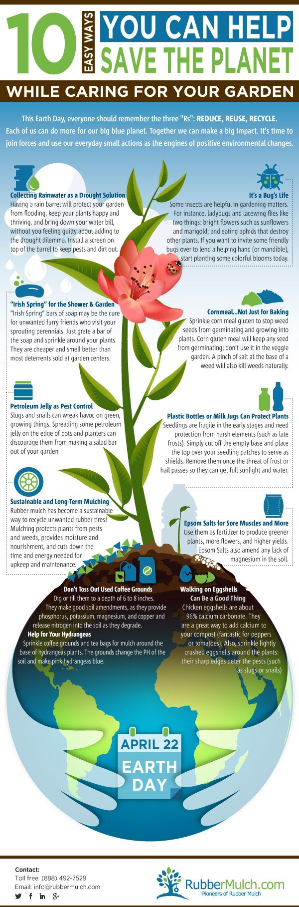 How Can Gardening Help The Environment