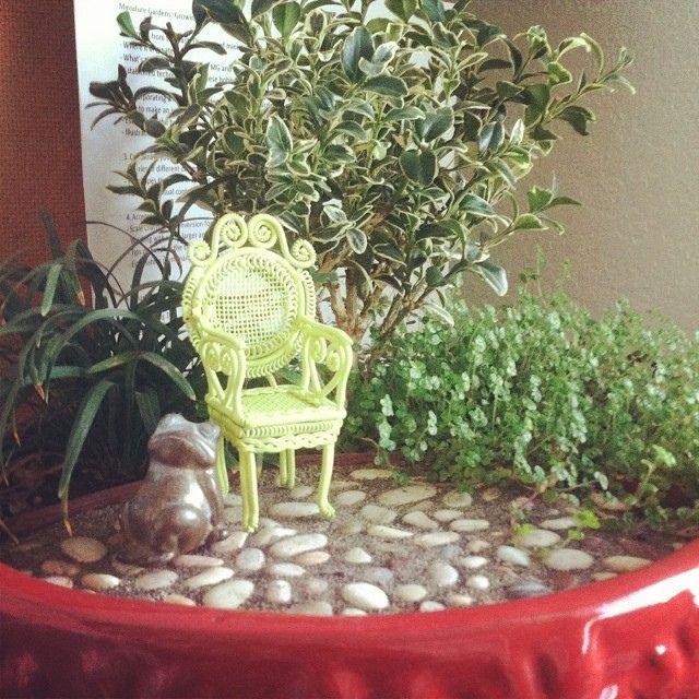 The view from my desk. Lol! #miniaturegarden #gardeninginminiature #indoorgardening #cute #cutestagram by Janit of Two Green Thumbs Miniatur...