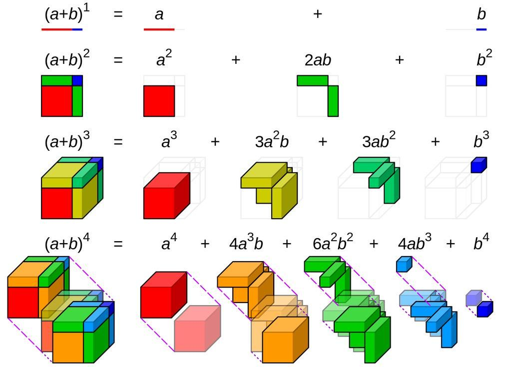Binomial Expansion visualized | Helpful&curious tips | Pinterest ...