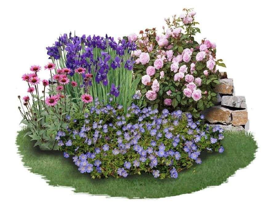 Beet Ideas Creative Bedding Ideas For Your Garden A Complete